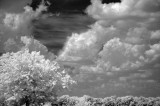 Wicked Clouds! BW