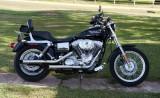 My Harley-Davidson's
