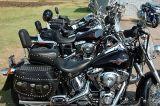 Black Bikes in a Row