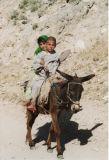 Afghanistan 2003