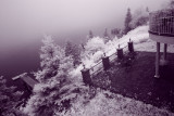 IR Test of Canon 500D
