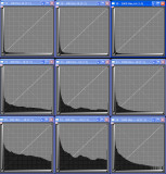 Thermal Signal+Noise in Canon 20D, 40D, 500D