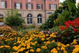 flowers in Marbach