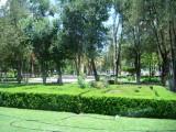 Parque Guadiana Julio 2010 -01.JPG