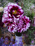 Dahlias in vase