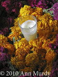 Votive with marigolds & celosia
