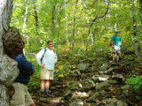 Steep Bald Knob Trail.jpg