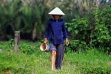 Lady at a ricefield
