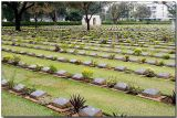 War Cemetery 2