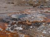 Upper geyser basin, Yellowstone