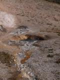 At Lone Star Geyser, Yellowstone