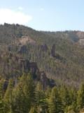 Along the east entrance road, Yellowstone