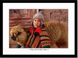 A Boy and His Baby Alpaca 4