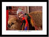A Boy and His Baby Alpaca 3