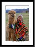 A Boy and His Baby Alpaca 2