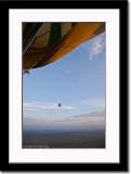 Hot Air Balloon Over Serengeti 2