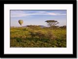 Hot Air Balloon Over Serengeti 5