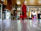 Monk at Botataung.jpg