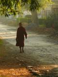 Monk in the morning.jpg