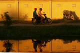 Sunset yellow wall 3.jpg