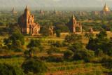 Bagan temples.jpg