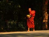Monk on the roads of Bagan.jpg