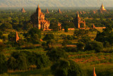 Central Plain Bagan 1.jpg