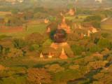 Green plains of Bagan.jpg