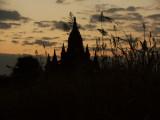 Temple sunset Bagan.jpg