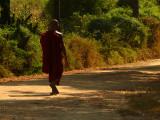Monk walking Bagan 1.jpg
