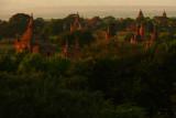 Fields of Bagan 20.jpg