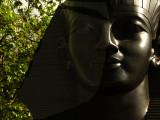 Sphinx web.jpg