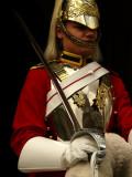 Horse Guard web.jpg