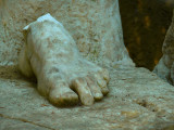 Roman foot web.jpg