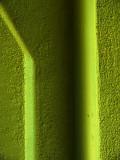 Green on green.jpg