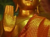 Buddha in LP.jpg