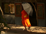 Monk with umbrella.jpg