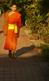 Lone monk walking.jpg