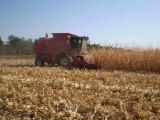 maiz de 10 tons con riego en Ucrania.JPG