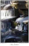 28Feb06 Icy Falls - 10266