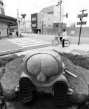IMG_8709_DxO.jpg