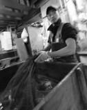 Tsukiji Poissons