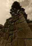Temple Ryoanji