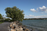 Cdga Lake Shoreline.jpg