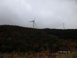 Wind generator.jpg