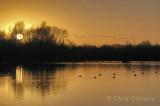 Radley Lake at Sunset