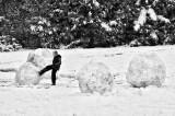 Embryonic snowmen