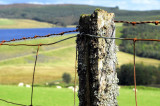 Llyn Brenig North Wales