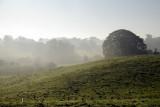 Mold north Wales