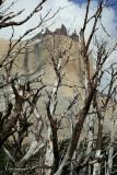 Torres del Paine 309.jpg